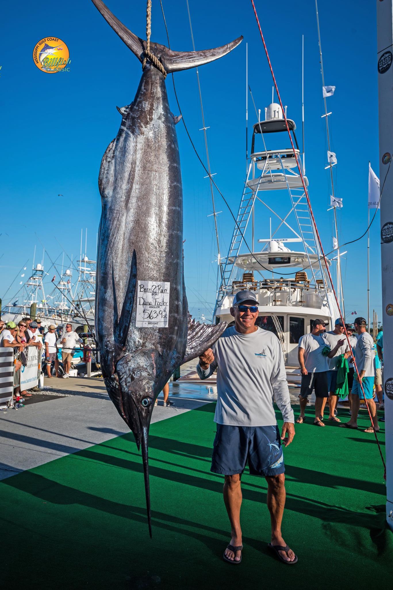 Pensacola Fishing Report 6/29/17