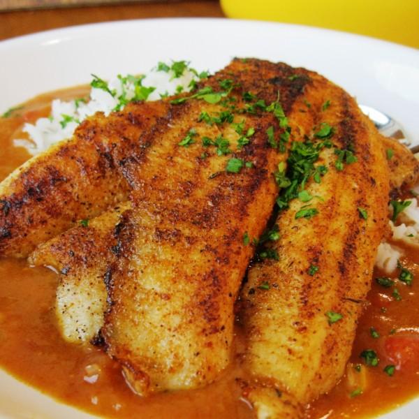 Redfish Creole