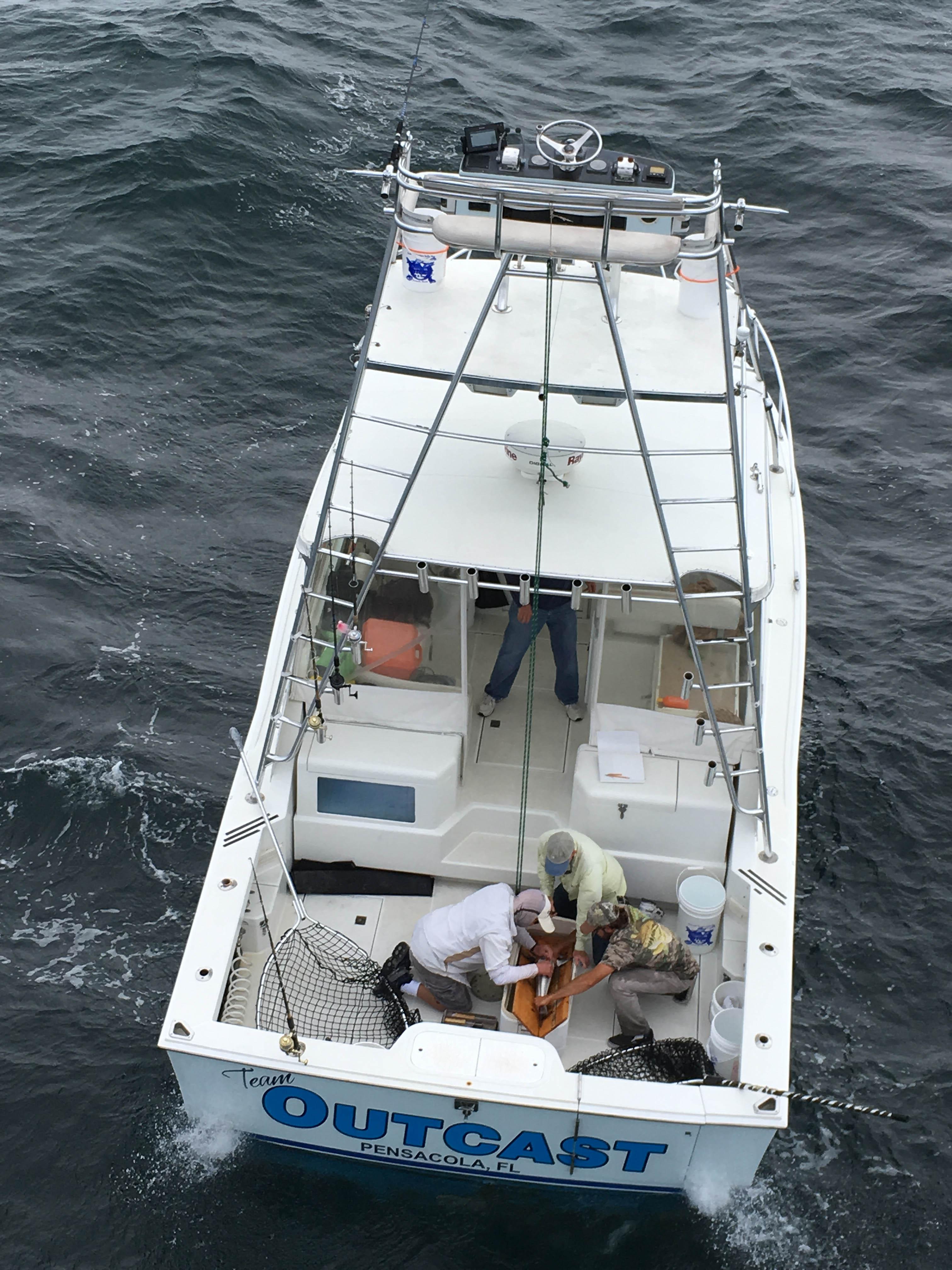 Pensacola Fishing Report 7/6/2017